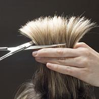 Des coiffeurs new-yorkais contre la marée noire !