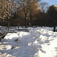 New York sous la neige ! (Photo Nathalie) (Photo Nathalie Fitzpatrick)