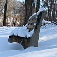 Un banc sous la neige, dans le Clove Lakes Park, à Staten Island. (Photo Nathalie Fitzpatrick) (Photo Nathalie Fitzpatrick)