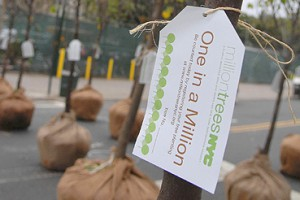 New York se met au vert pour le 40ème Earth Day
