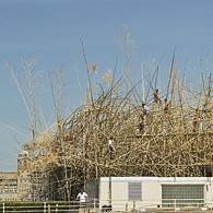 Un Big Bambou sur le toit du Met