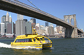 Un Water Taxi sous le pont de Brooklyn.