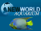New World Aquarium