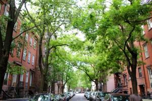 Dans les rues paisibles de Greenwich Village. (Photo Jean-Philippe)