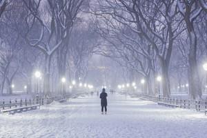 L'hiver arrive à New York !