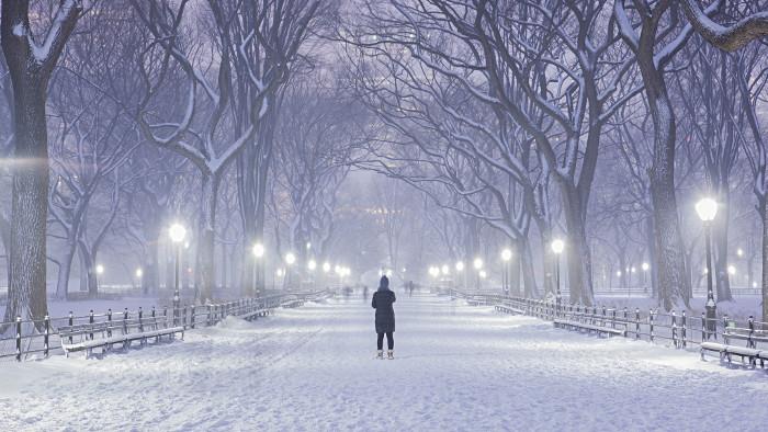 Central Park sous la neige l'an dernier. (Photo Anthony Quintano)