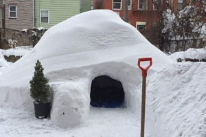 New York : il loue son igloo sur AirBnB