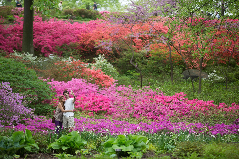 Le jardin botanique de new york f te ses 125 ans new york for Jardin new york
