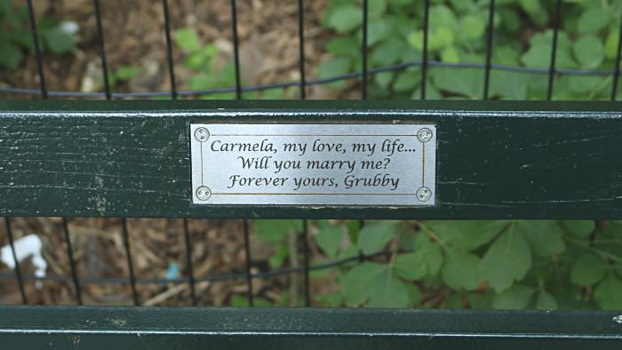Demande en mariage sur un banc de Central Park...