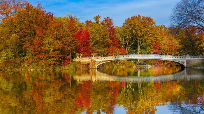 Central Park et le Bow Bridge en automne