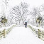 Première tempête de neige de l'année à New York