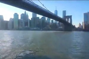 En vidéo : le Brooklyn Bridge Park