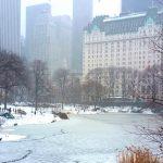 New York : retour à la normale après la tempête de neige
