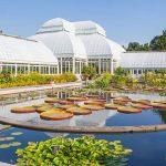 Découvrez le jardin botanique de New York