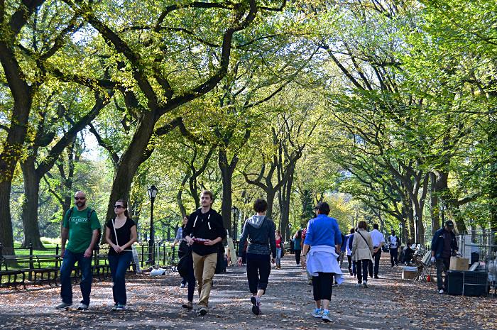 Cette Grande Avenue Pitonne Borde Darbres Est Emblmatique De Central Park Les New Yorkais La Surnomment Dailleurs Promenade