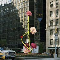 Des roses géantes en plein Manhattan
