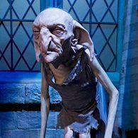 Harry Potter jette un sort à New York