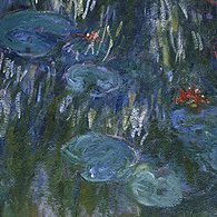 Les nymphéas de Monet au MoMA