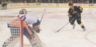 Hockey sur glace New York