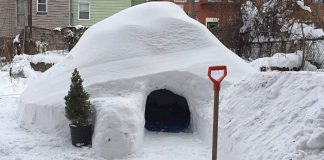 igloo new york neige