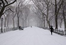 Central Park sous la neige à New York