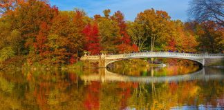 Central Park et le Bow Bridge en automne