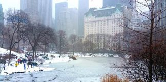 central park neige new york