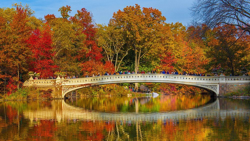 bow bridge new york