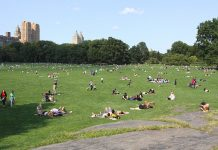 central park new york sheep meadow