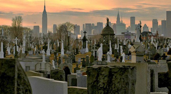 calvary cemetery new york