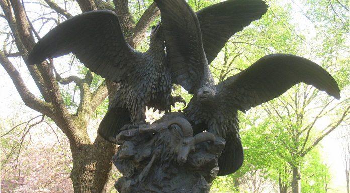 eagles central park new york