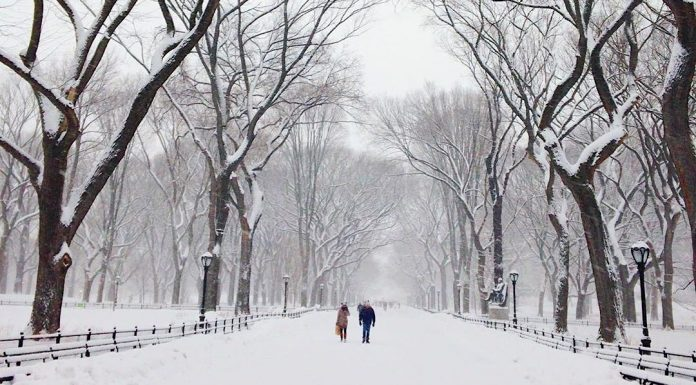 new york neige 2018