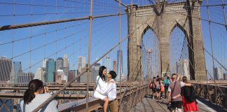 pont brooklyn new york