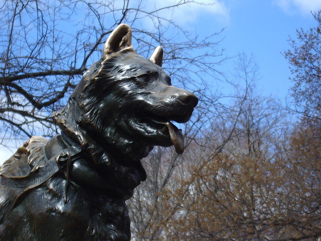 Balto, le seul chien à avoir sa statue à New York