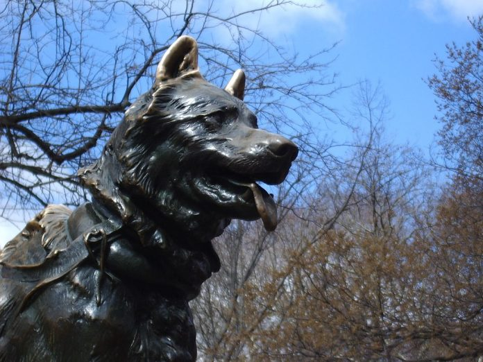balto central park new york