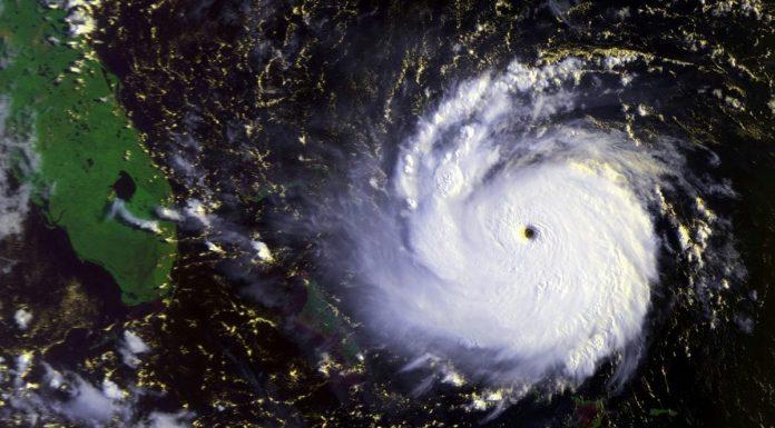 cyclone new york