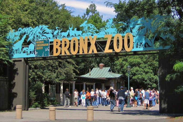bronx zoo new york