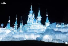 festival luminocity
