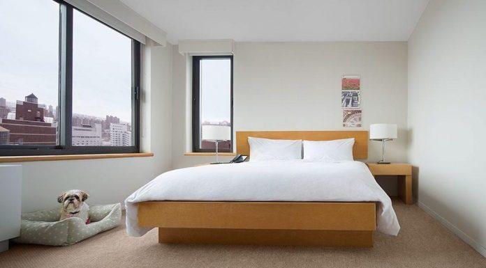 avis hotel new york